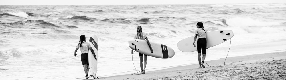 Choose your board to hire among over 100 surf boards